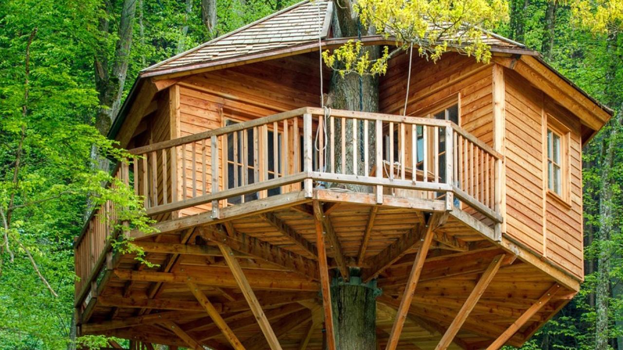 Leben im Baumhaus: Alles zu Planung und Bau eines Kindheitstraums