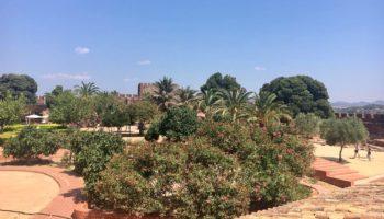 Viel Natur an der Algarve einem Camping Reiseziel
