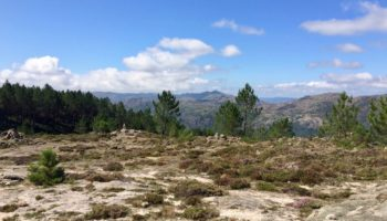 Blick auf die Wildnis in Portugal beim Wildcamping in Europa