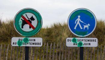 Verbotsschilder an einem Hundestrand in Frankreich