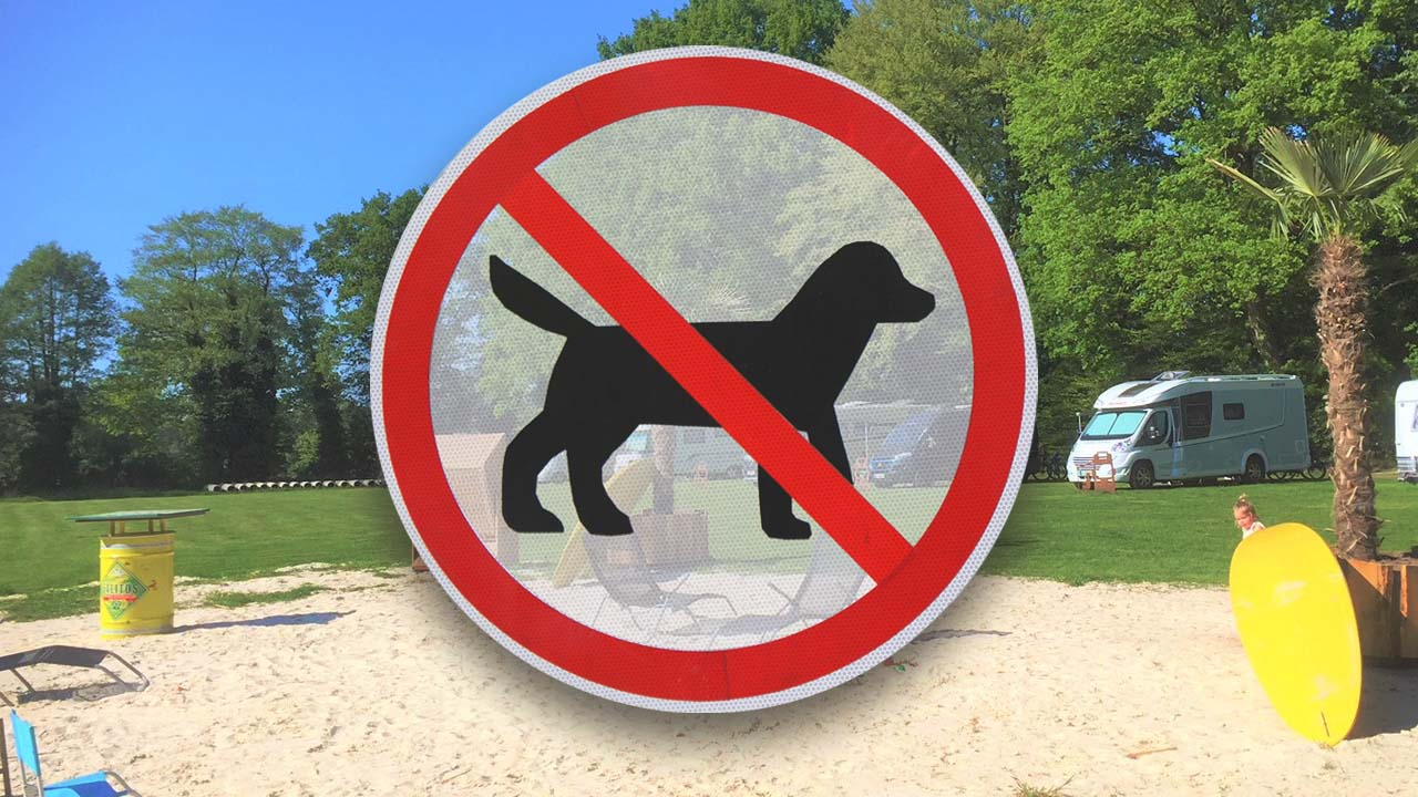 Campingplaetze ohne Hund mit Hundeverbot