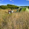 Camping in Wales: Wichtige Infos für den Urlaub in walisischer Natur