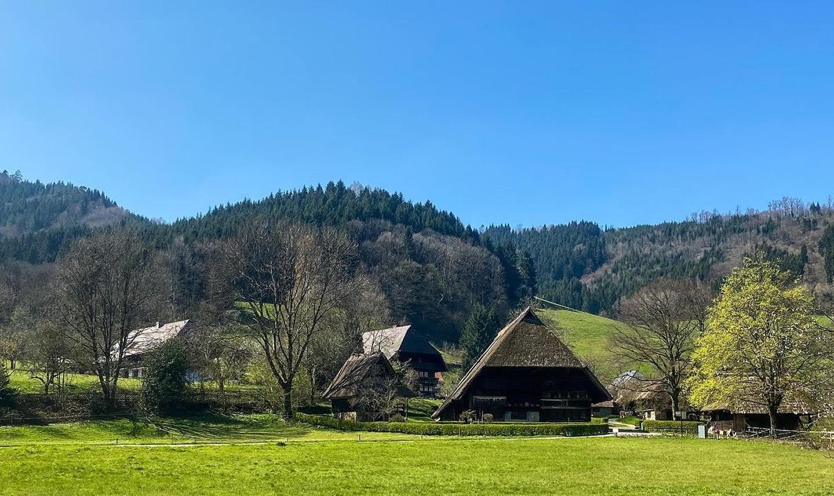 Kuckuck vom Camping im Schwarzwald: Natur und Kultur im größten Mittelgebirge Deutschlands